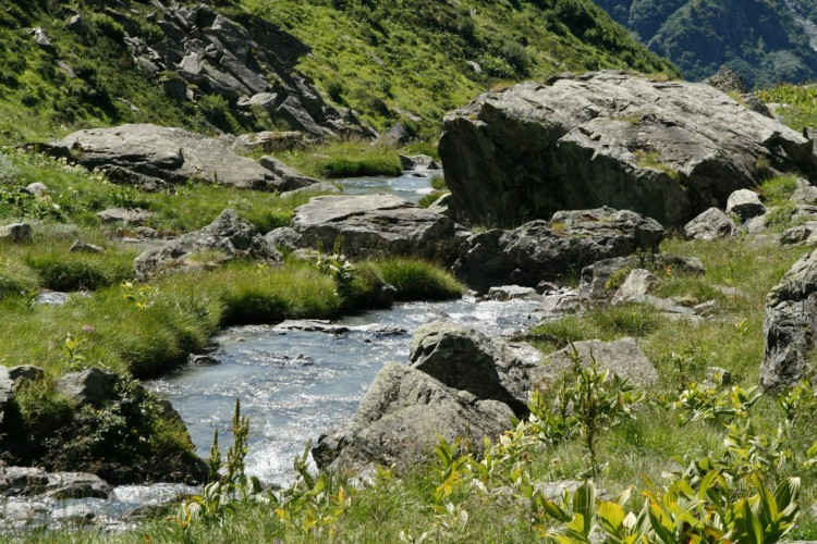Site rencontre calvados